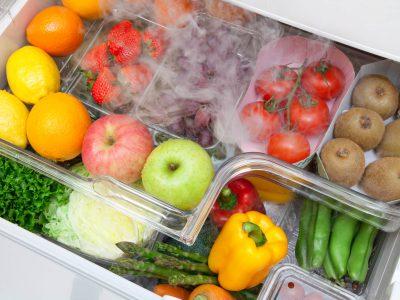 冷蔵庫・冷凍庫の選び方、おすすめポイント【決定版】